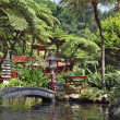 The park on the Madeira - Monte Palace Tropical Garden — Stock Photo