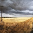 Soil rural road and columns of an electric main — Stock Photo