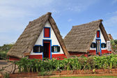 Two rural houses with triangular thatched roof — Stock Photo