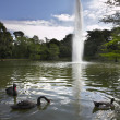 Park Buen Retiro — Stock Photo