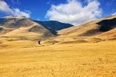 Las pintorescas colinas de california — Foto de Stock