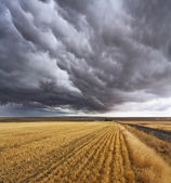 Thunderclouds. Montana, the USA — Stock Photo