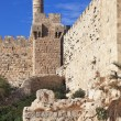 Stock Photo: Sunset gently illuminates Tower of David
