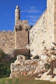 Západ slunce svítí jemně Davidova věž — Stock fotografie