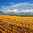 Solar autumn midday on fields of Montana - Stock Photo