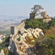 The beautiful moorish fortress in Portugal — Stock Photo #11554130