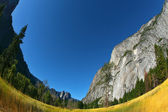 Magnificent glade in valley Yosemite park — Stock Photo