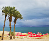 The beach canopies on a beach of the Dead Sea in a thunder-storm — Stockfoto