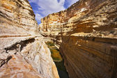 The gorge En-Avdat during a drought — Stock Photo