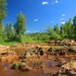 Old sandy quarry in green wood — Stockfoto