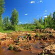 Stock Photo: Old sandy quarry in green wood
