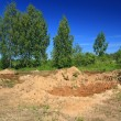 Stok fotoğraf: Old sandy quarry in green wood