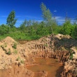 Old sandy quarry in green wood — Foto Stock