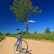 Stock Photo: Bicycle on rural sandy road