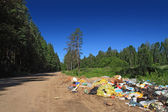 Garbage pit on rural road near wood — Stock Photo