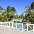 Area of hotel Sol Cayo Largo. — Foto Stock