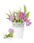 Tulipani rosa in vasi in metallo — Foto Stock