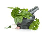 Fresh flavoring herbs and spices in mortar — Stock Photo