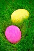 Uova di Pasqua colorate dipinte in erba — Foto Stock