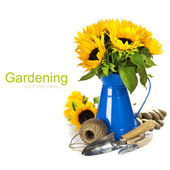 Sunflowers and garden tools — Stock Photo