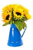 Zonnebloemen in een blauwe vaas — Stockfoto