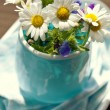 Stock Photo: Bouquet daisies