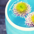 Stock Photo: Bowl of water and flowers