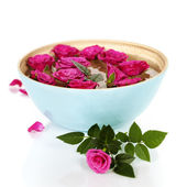 Pink roses in bowl — Stock Photo