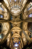 Cathedral of the Holy Cross and Saint Eulalia - Barcelona - Spai — Stock Photo