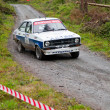 Stock Photo: Ford rally