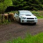 Постер, плакат: J Connors driving Subaru Impreza