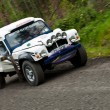Постер, плакат: Land Rover Tomcat rally