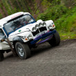 Land Rover Tomcat rally — Foto de Stock