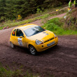 Ford Ka rally — Stock Photo