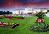 Gardens and Flowers In Schoenbrunn Castle, Vienna — Stock Photo