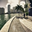 Miami Skyscrapers near Bayfront Park — Stock Photo