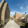 NEW YORK CITY - MAR 8: High Line Park in NYC seen on March 8rd, — Stock Photo
