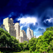 New York City - Manhattan Skyscrapers from Central Park with Tre — Stock Photo #11802175