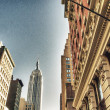 Manhattan Buildings and Skyscrapers - Stock Photo
