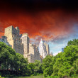 New York City - Manhattan Skyscrapers from Central Park with Tre — Stock Photo #11934657