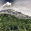Nature of Mount Saint Helens, U.S.A. — Stock Photo #12092903