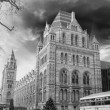 Royalty-Free Stock Photo: London - Natural History Museum