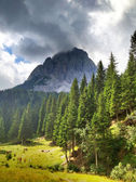 Italian Dolomites Landscape and Colors in Summer Season — Stock Photo