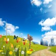 Ecological City — Stock Photo