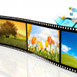 Film strips with a picture of flowers - Stock Photo