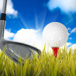 Golf — Stock Photo #11016131