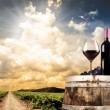 Wine still life against vineyard — Foto Stock