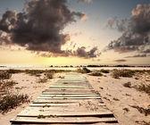 Ponte de verão — Foto Stock