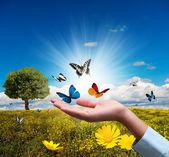 Protect environment — Stock Photo