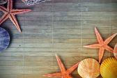 Shell and starfish frame — Stock Photo